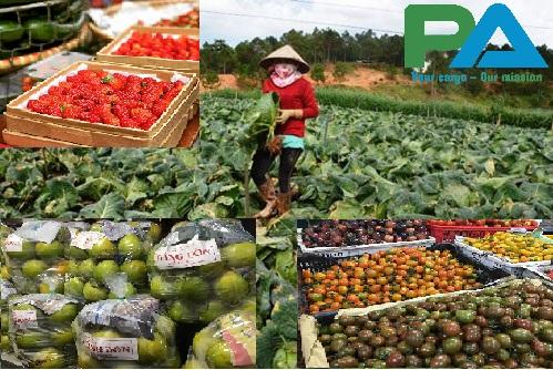 Một số loại hàng nông sản ở Đà Lạt