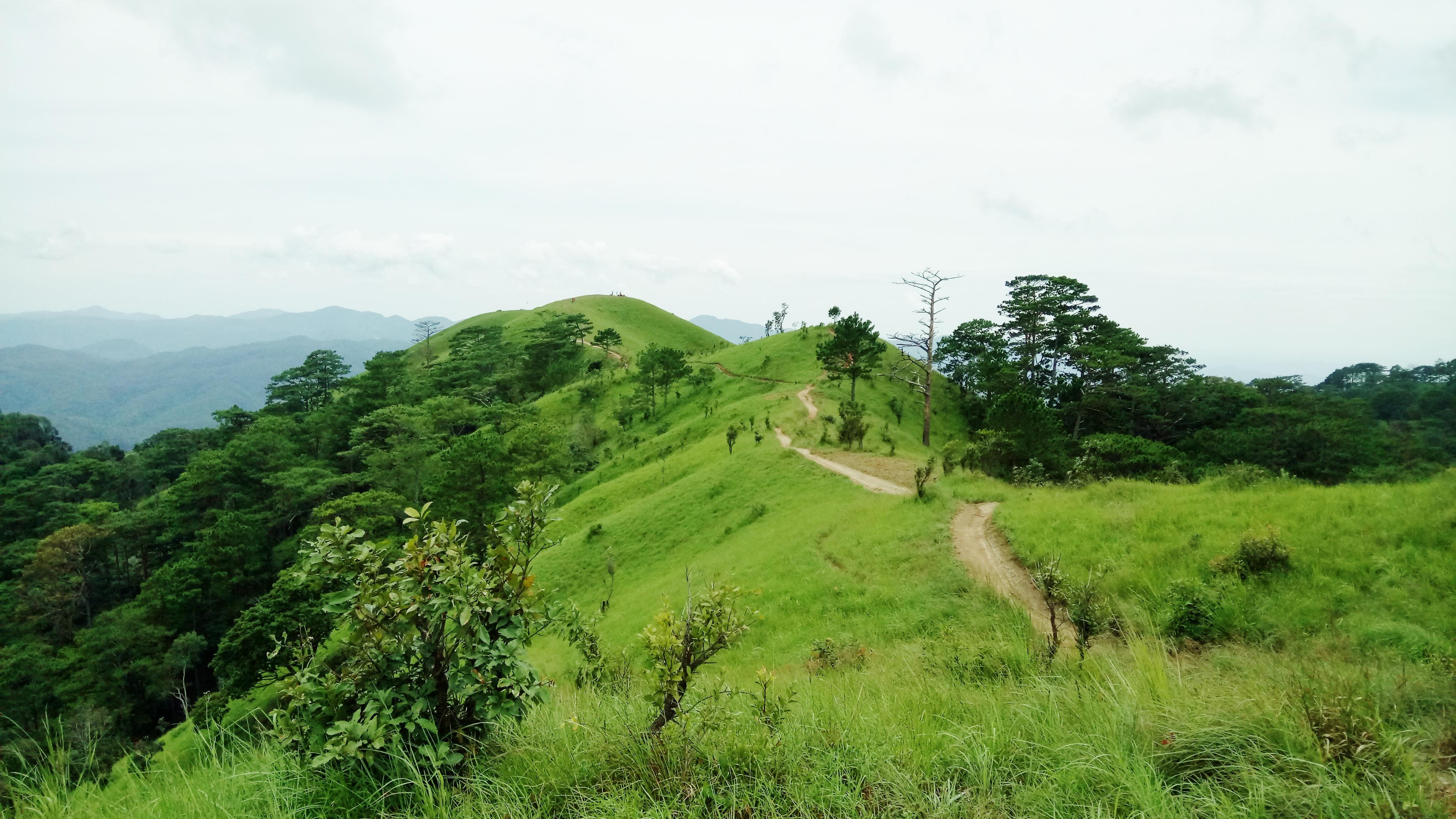 Hướng dẫn trekking Tà Năng Phan Dũng